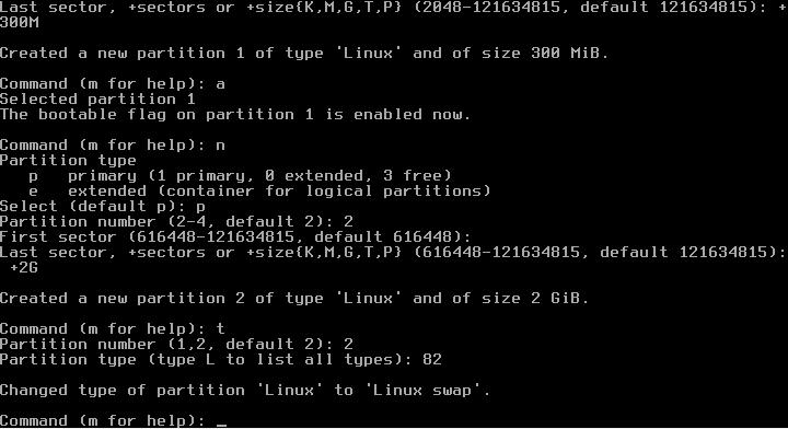 Figura 7: Criação da partição swap
