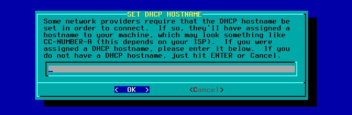 Figura 44: Definição do servidor DHCP